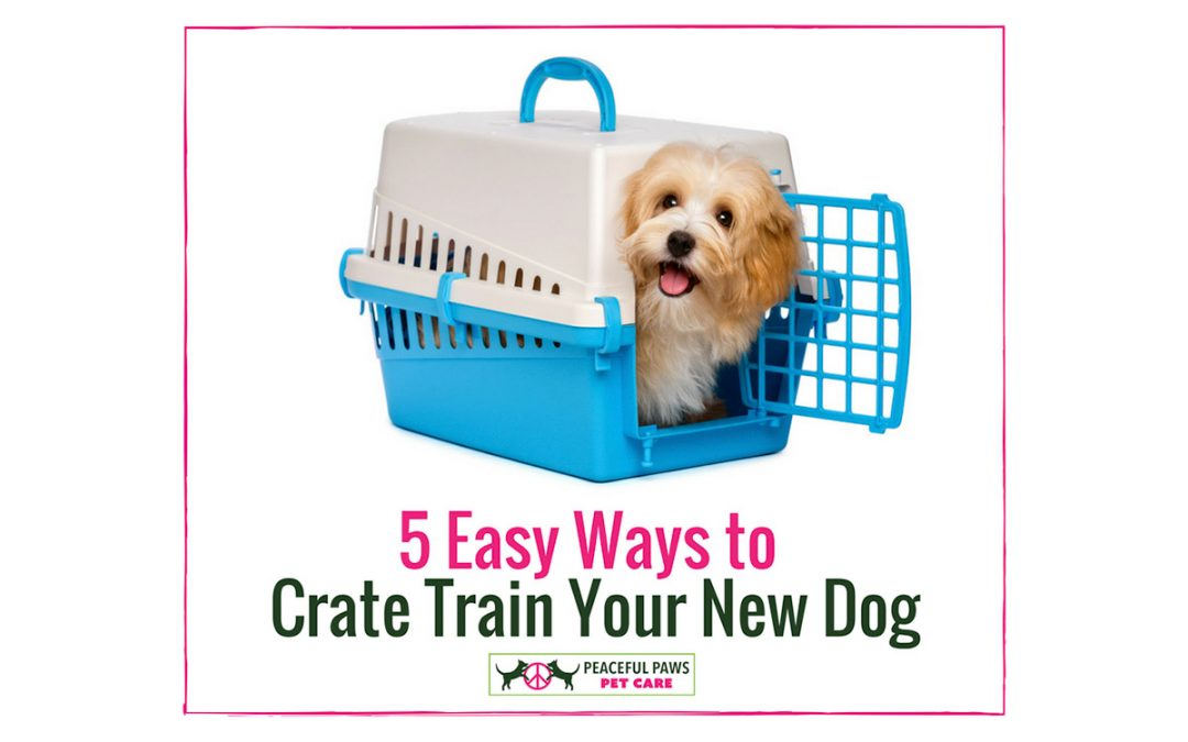 To Crate or Not To Crate – That is the Question!