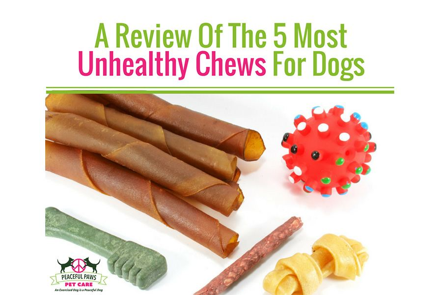 A Review Of The 5 Most Unhealthy Chews For Dogs
